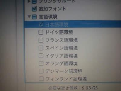 日本語環境のみを選択する