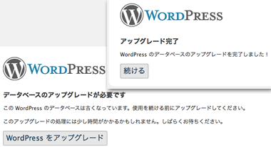 WordPress Upgrade ScreenShot